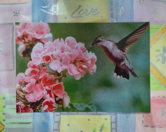 Art Photography/Pink Green Bathroom Picture/Unique Gift for Mom/Hummingbird Picture/Canvas Wall Art/Bird Photography/Mixed Media/Decoupaged