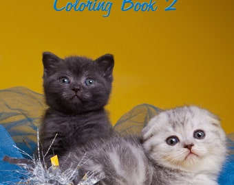 Cute Kittens and Cats Coloring Book 2