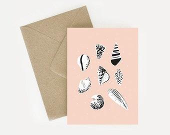 Map ground shells pink, black & white