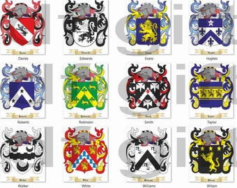 Surname Coat of Arms downloadable Family Crest emailled high quality png file for print projects transparent perfect for any background