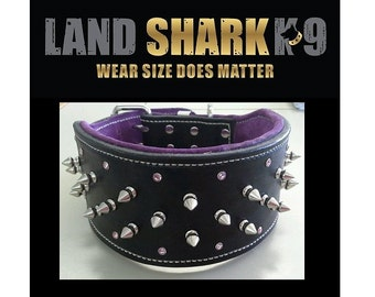 Black and Purple Studded Suede Leather Dog Collar with Crystals and Nickel