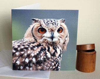 Eagle Owl - a wildlife themed greetings card. Celebration. Photographic owl portrait.