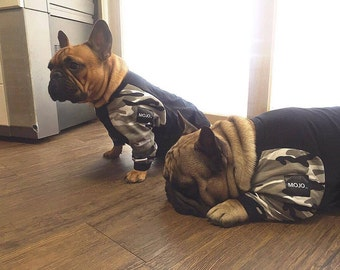 Dog clothes in camouflage/black raglan style