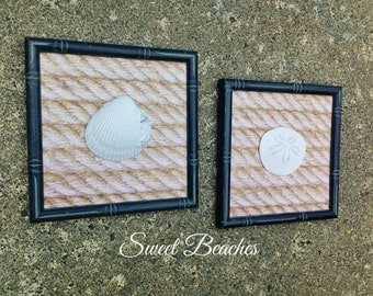 Set of 2 -  Clam Shell and Sand Dollar Wall Decor  Beach Seaside Nautical Wall  Decor
