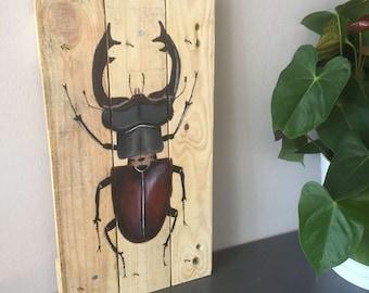 Art on PALLET | Stag Beetle