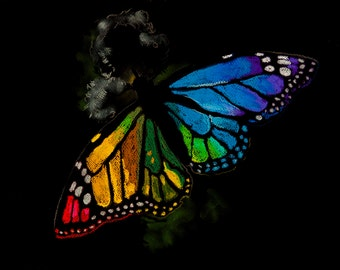 Beautiful butterfly.Instant download.JPG and TIFF files for printing an original pastel painting.