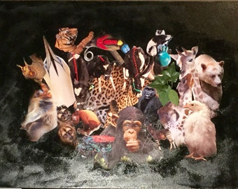 The Animal Collage
