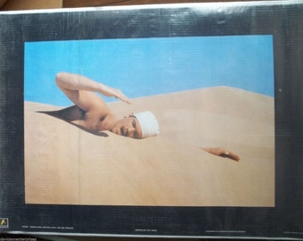 Hipgnosis 23.5x33.5 Meaning Of Life Poster 1979 Pink Floyd