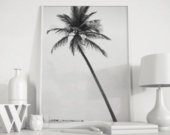 Palm tree, palm tree photo, palm tree print, Black White Photography, modern minimalist, Black White Palms, Beach decor, Ocean decor, ocean