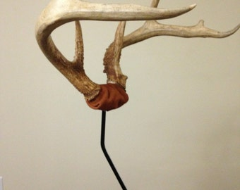 Skull Cap Antler Mount - Kit