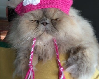 Cute pink cat hat