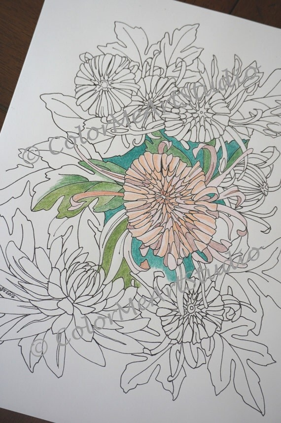 Chrysanthemum Coloring Page Flower Coloring Page Printable