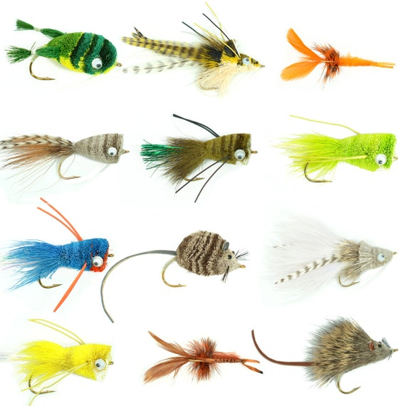 Bass Bug Collection - Set of 12 Bass Fly Fishing Flies - Surface Poppers Divers and Subsurface - Hook Sizes 2,4 and 6
