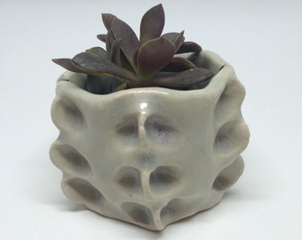 Round white planter, pinching, clay, gift, succulent, handmade, gift, desk decoration, table decoration