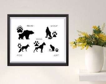 Animal tracks 2 Illustrations WallArt Print digital bear wolf fox dog cat