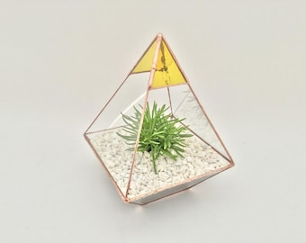 Pyramid Stained glass yellow terrarium planter cacti succulents