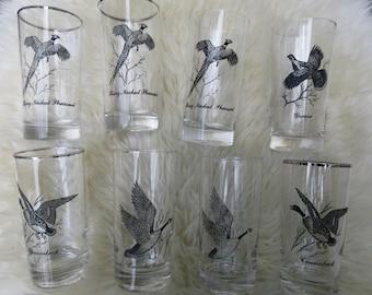 Silver Rimmed Bar Glasses Sportsman Wild Game- Bird Federal Glassware