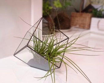 Glass Geometric Stainedglass terrarium/glass planter/handmade cube/glass wedding decoration/succulent planter/fairy lights holder