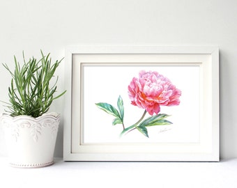Pink Peony flower. Watercolor Art Print 7,8x11,8