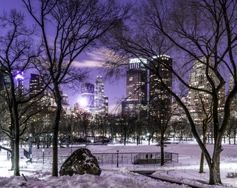 Central Park Night Owls
