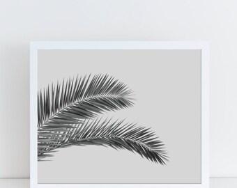 Palm Leaf Poster, Black and White Wall Art, Tropical Decor, Botanical Poster, Plant Printable, Instant Download, Banana Leaf, Digital Paper.