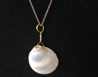 Wire Wrapped Seashell Pendant