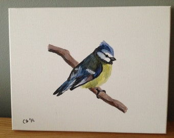 Blue Tit Canvas 10x8 Inches
