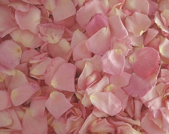 Pink Rose Petals. 30 cups. Flower Petals. Freeze dried Petals. Flower Confetti. Wedding Petals. Dried Flower Confetti. Grown in USA!