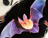 Mixed Media Bat Drawing...