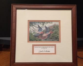 """John A. Ruthven """"Passenger Pigeons in Flight"""""""