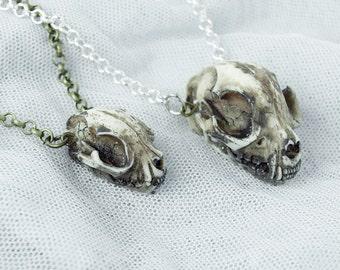 Cat skull animal skull skull chain plain antique brass / silver / black