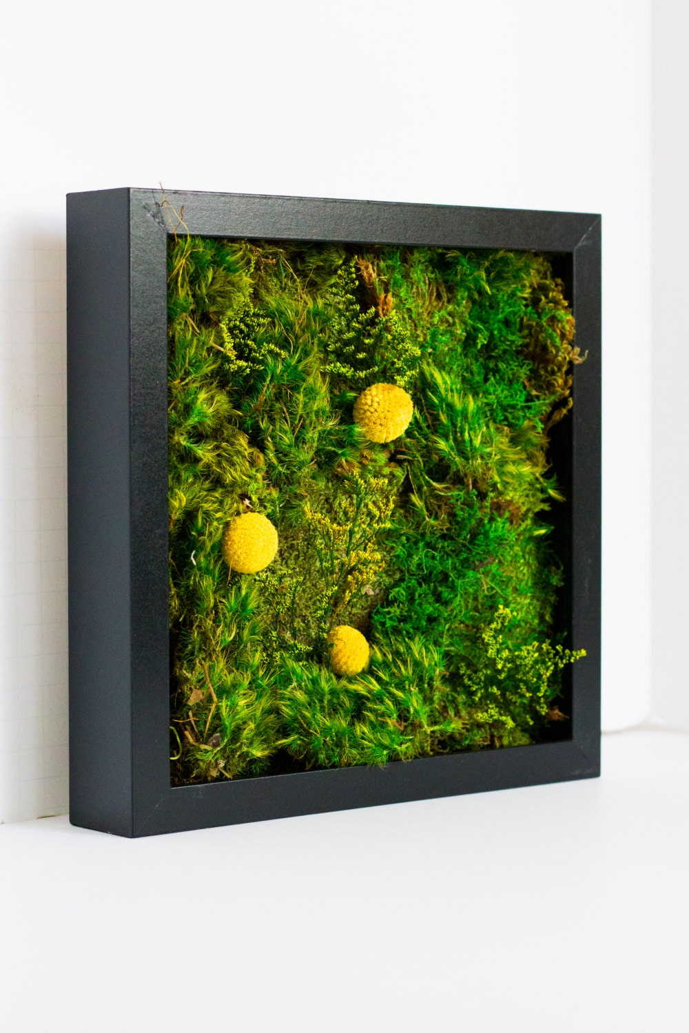 moss wall art moss art work real preserved moss no maintenan