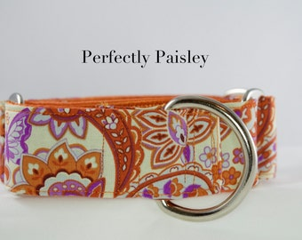 Perfectly Paisley (purple and orange): Martingale and Buckle  Dog Collar