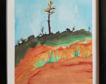Agave Tree in Sedona
