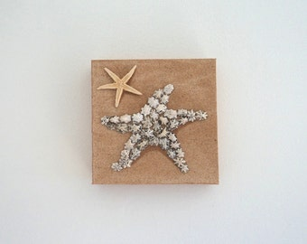 Starfish in Seashell Mosaic on Sand