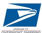 overnight shipping upgrade - domestic