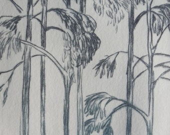 Eucalyptus - 3.5 x 5 inch drypoint ETCHING of a Gum Tree Forest