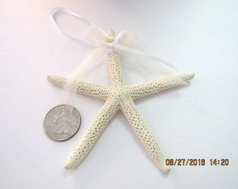"2-1/4"" White starfish Christmas Ornament   Beach Christmas Decor   Holiday Trinket    Beach Wedding Favors"