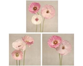 Floral Nursery Set, Floral Wall Art Set, Botanical Print Set, Modern Farmhouse Decor, Rustic Decor Ideas, Boho Floral Nursery, Poppy Art Set