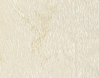 Nani Iro Kokka Japanese Fabric Wild elegant wind - clear balance - 50cm
