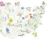 STATE FLOWERscape Map Drawing (Art Print) 48 State Flowers America USA Home Decor Wedding Anniversary Moving Gift Topography Floral Decor