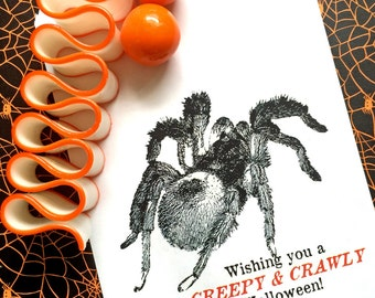 HalloweenTreat Bags, Spider candy bags, Tarantula Spider halloween favors, spiders, Personalized candy bags, Favor bags,Sweets, Treat bags