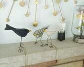 3 birdies for Julia