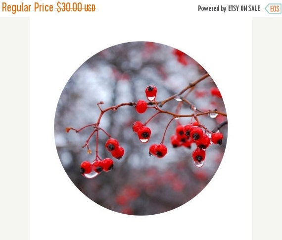 50 off sale winter home decor red berries by for Home decor 50 off