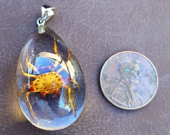 Spiked Spider Necklace in Resin