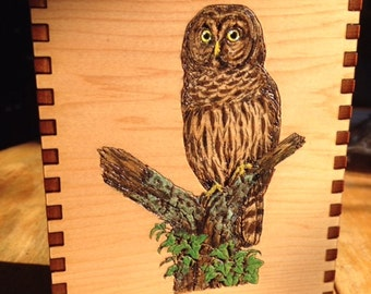 5.5 x 3.8 x 1.5 Owlish Wisdom Painted Cedar Box