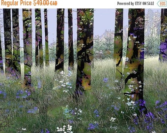 On Sale Nature, Landscape, Springtime, Fine Art Print, Giclee Archival Print, Photomontage, Collage, Painted Photographs,
