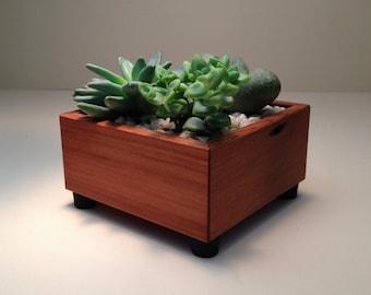 Succulent Planter Box, Square, Succulent Garden, Centerpiece Arrangement Planter, Cedar Wood