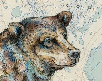 "Bear art on topography map, 8"" x 10"" Archival print, wildlife illustration, animal print, wall art, Kodiak Bear illustration Alaska"