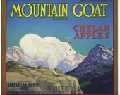 Mountain Goat Chelan Apples label Washington